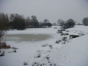 The frozen pond where I had to jump over to an island