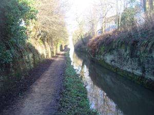Lovely urban canal cutting
