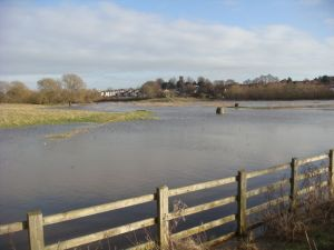 Flooded cache fields in Stafford