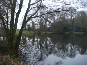 Lovely pond near one of the caches I found