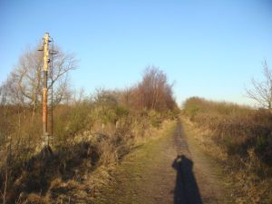 Old signal on the ex-railway line