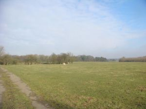 Lovely sunny views on the walk to the cache
