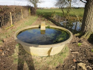 Circular cattle trough