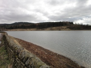 Reservoir in the Macclesfield Forest