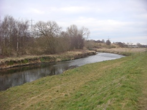 River Tame view whilst doing the River Tame Stroll series