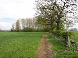 The walk to one of the caches