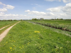 Walking the VERY flat area to the SW of Croston. It looks like you could be on the fens here.