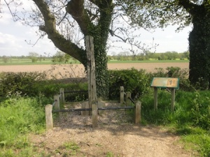 The Gibbet Post near to a cache