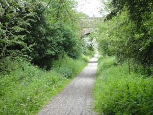 View down the old railway line, now a great cycleway