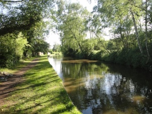 A very shady Trent and Mersey Canal in Burton