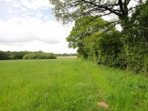 On the walk round the Willaston caches