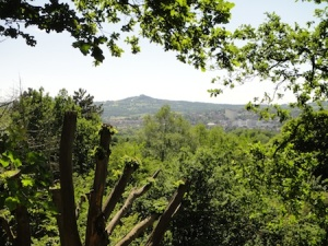 Looking out from the higher park of the Leasowes walk towards the Clent Hills