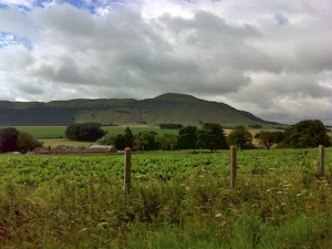 Views over towards West Lomond (the round topped hill in the background)